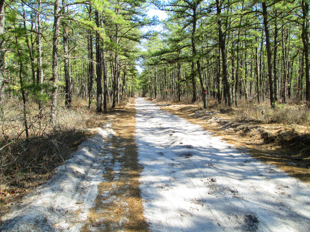 The Pinelands Preservation Act Of 1979