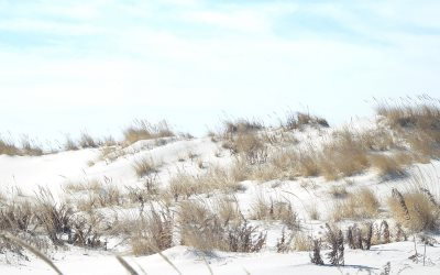 Best Sledding Places on the Jersey Shore